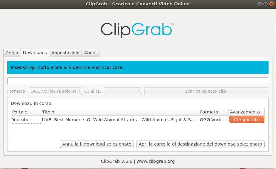 What else can ClipGrab do