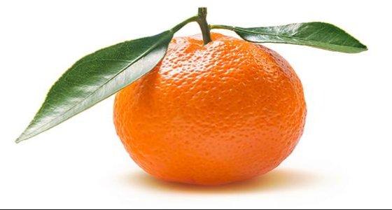clementine-riproduttore-organizzare-musica