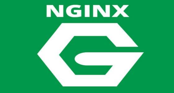 nginx-server-web